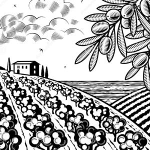 Periti Agrari